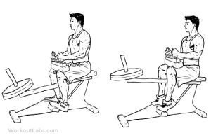 Seated_Calf_Raise